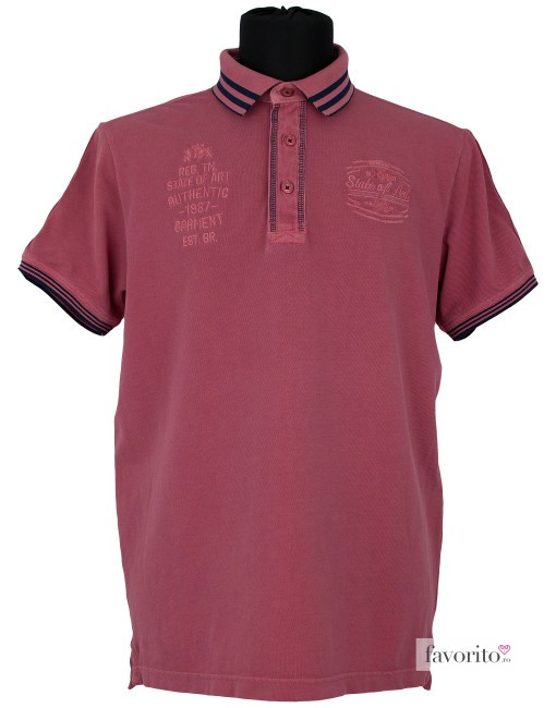 Tricou POLO barbati, guler dungi,  State of Art1